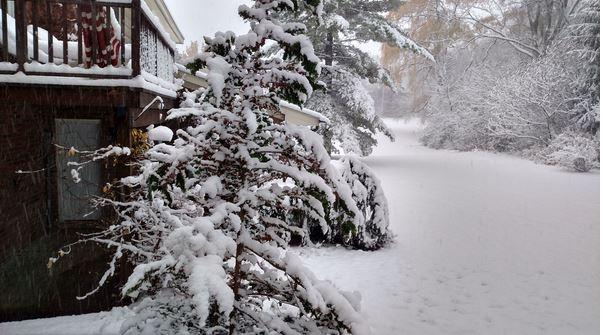 first_snow_112415