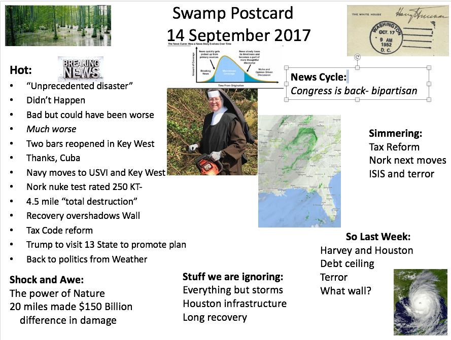 swamp13